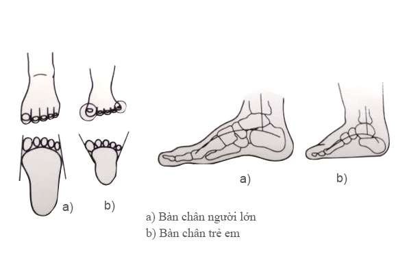 giầy tập đi cho bé, chọn giầy cho bé, tác hại khi chọn giầy cho bé không đúng